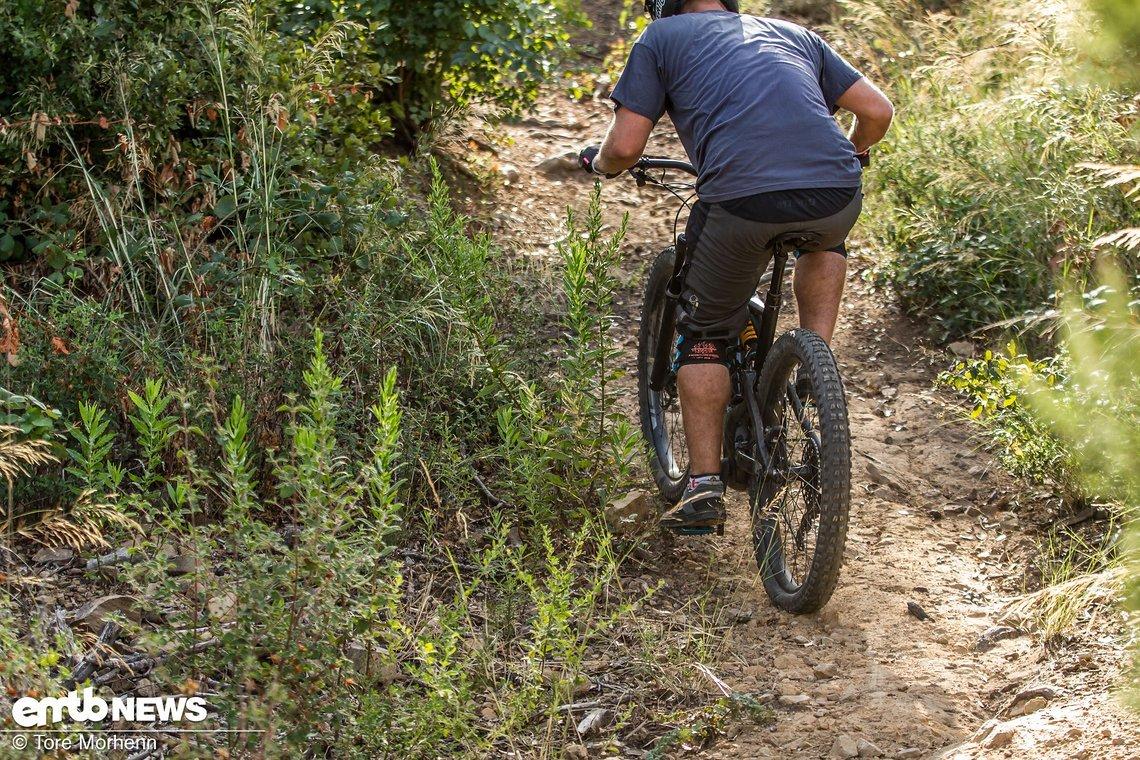 Bergauf verhindert der Butcher souverän, dass das Hinterrad einfach unkontrolliert durchdreht
