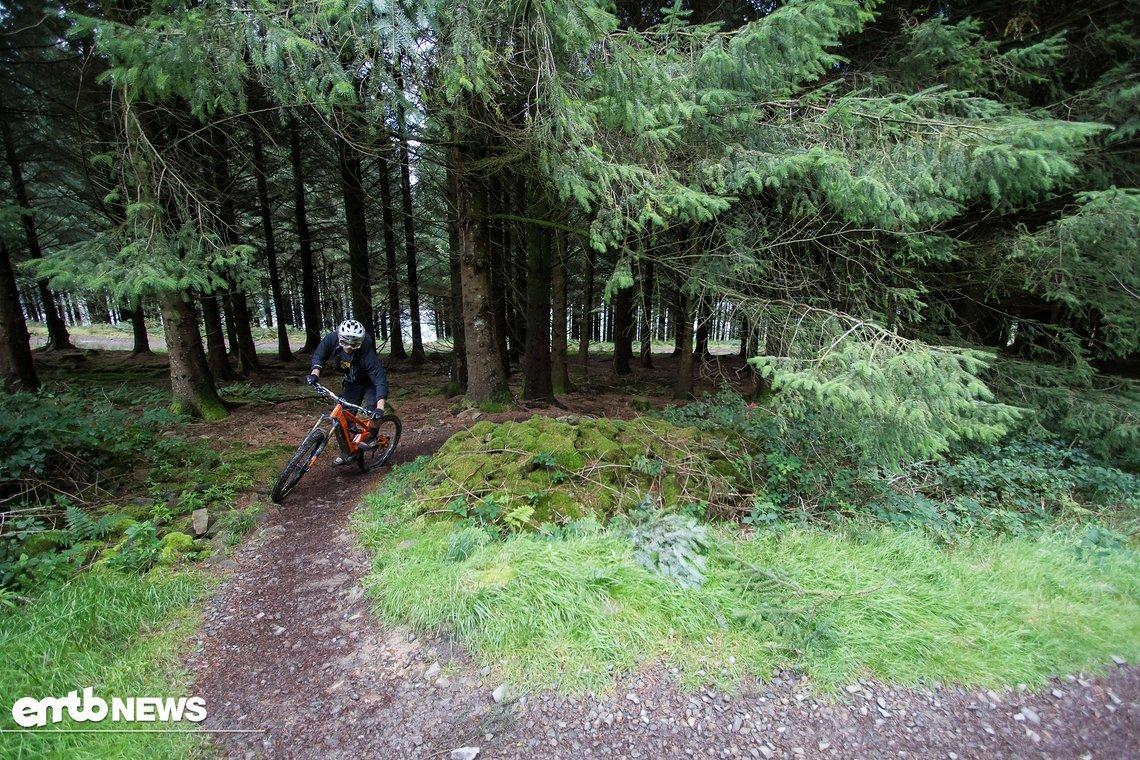 Am wohlsten fühlt sich das Orange Alpine 6 E LE auf anspruchsvollen Trails im Wald, wo es sein Potenzial nutzen kann.