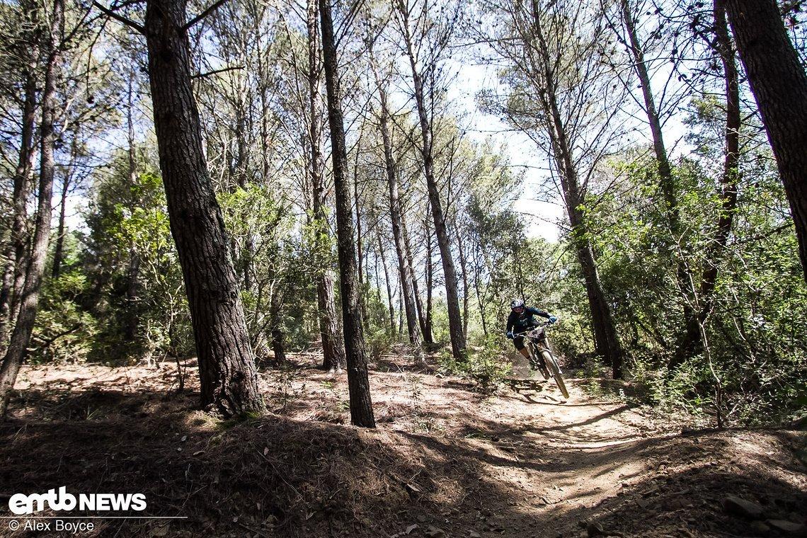 Stage 1: Rock and Roll – ein felsiger Trail durch einen offenen Wald, mit Anliegern und Drops.