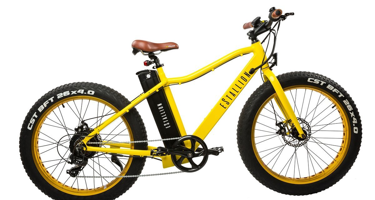 das estallion ein e fatbike cruiser zum kampfpreis. Black Bedroom Furniture Sets. Home Design Ideas