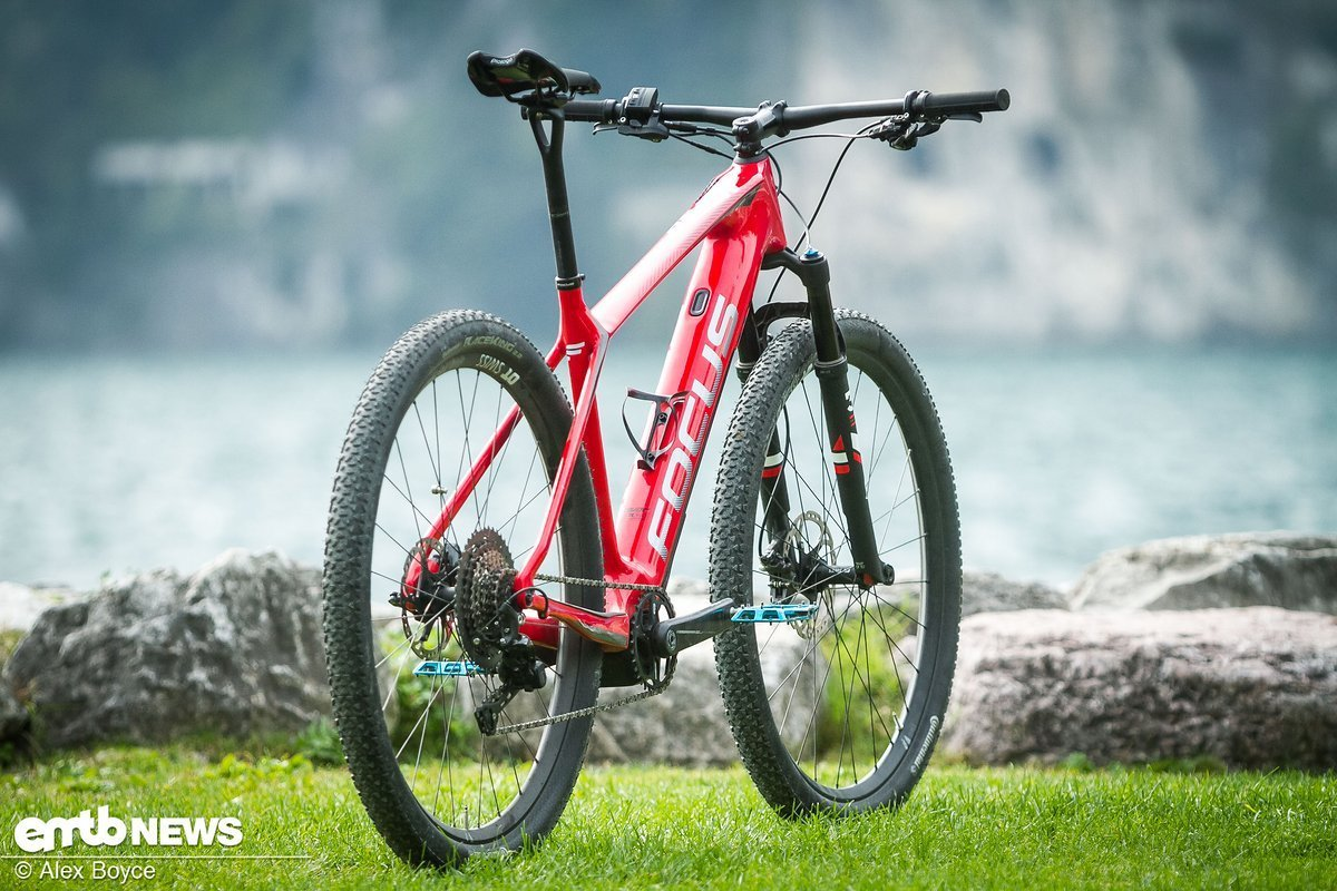 It looks like a regular XC bike.