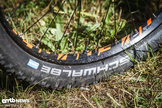 Lapierre eAM+ 35c Rims bieten dem Reifen den nötigen Halt