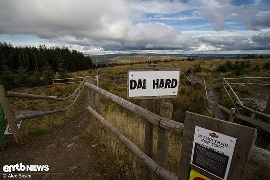 Dai ist ein walisischer Name