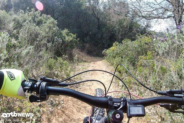 Mit dem Thok Mig-R auf dem Trail