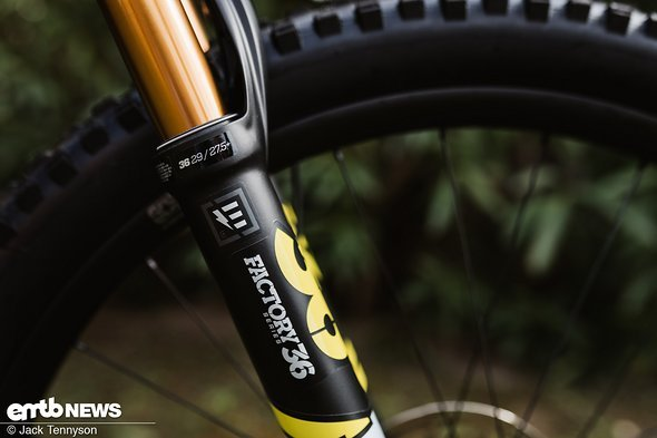 YT Decoy: Exclusive test of a brand-new E-Bike – eMTB-News de